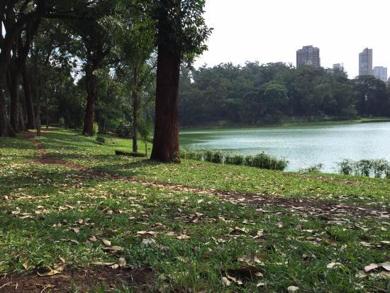 Parque Aclimação2