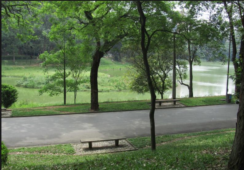 Parque Aclimação3