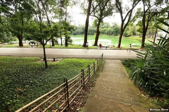 Parque Aclimação4