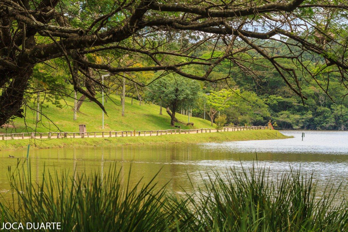 Parque Alfredo V.2