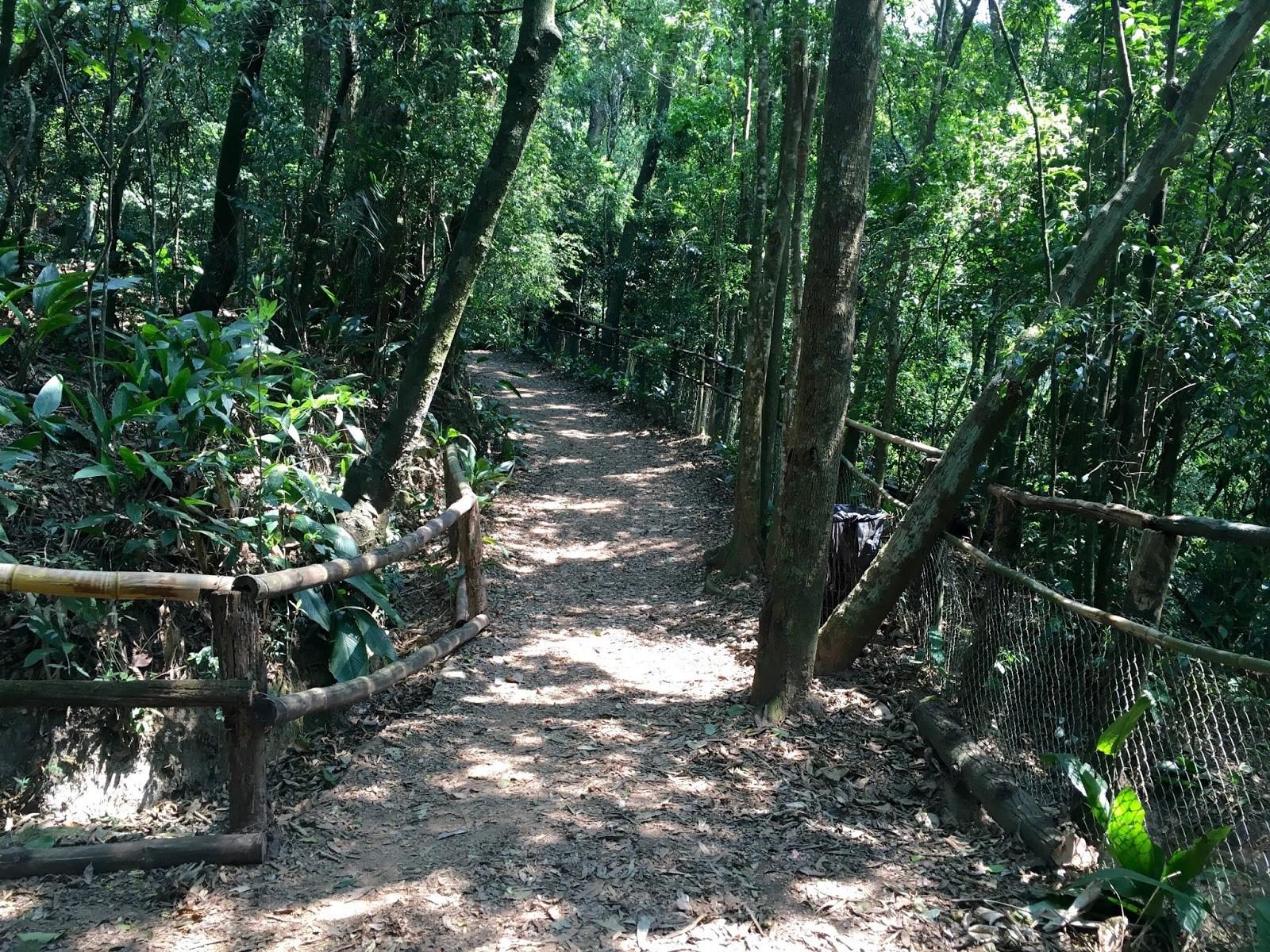 Parque Alfredo V.3