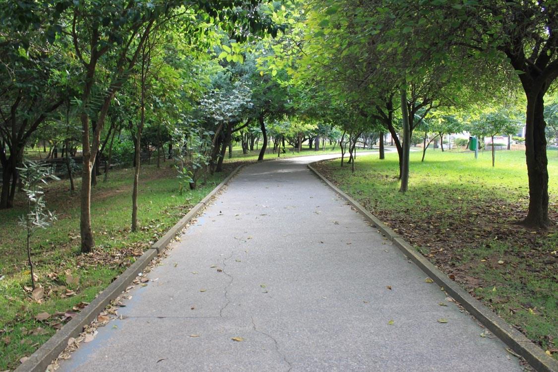 Parque Linear Tiquatira