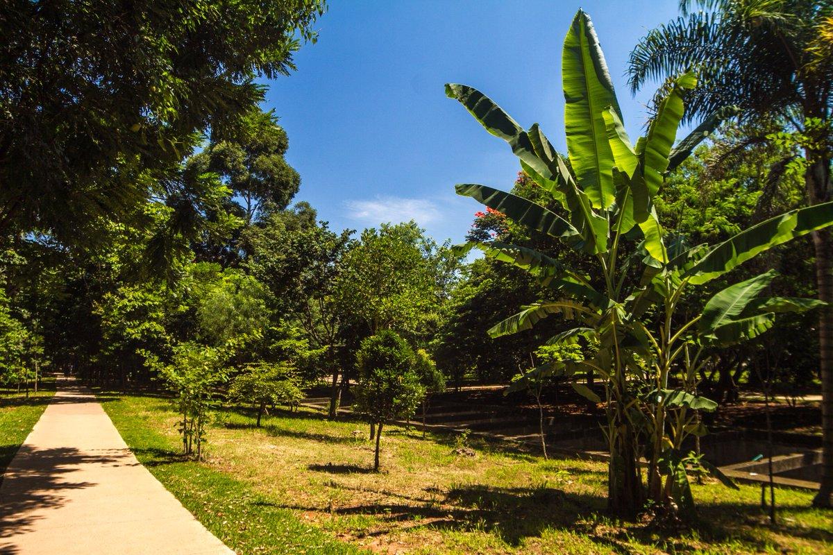 Parque Linear Tiquatira2