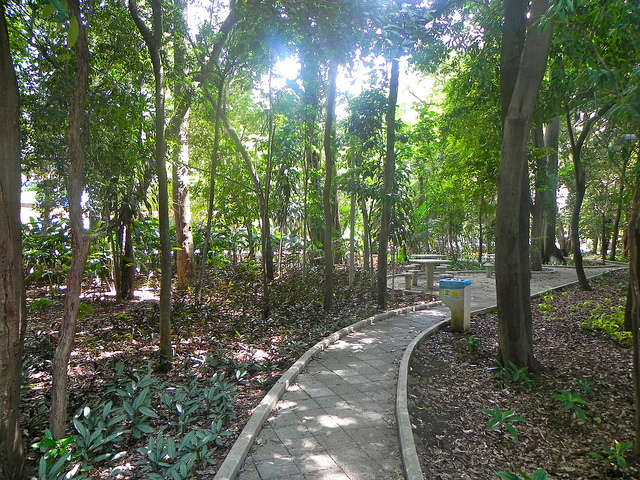 Parque Mário Covas2