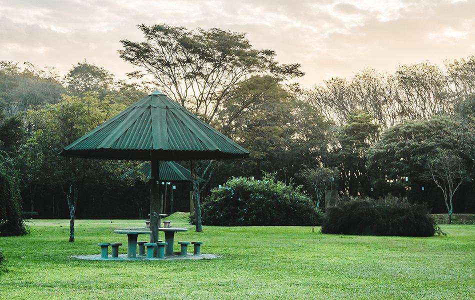 Parque Villa-Lobos3